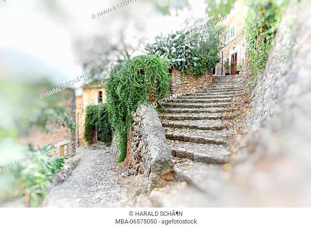 Spain, Majorca, Fornalutx, stairs, lane, cobblestones, climbing plants, partial blur, digital processed