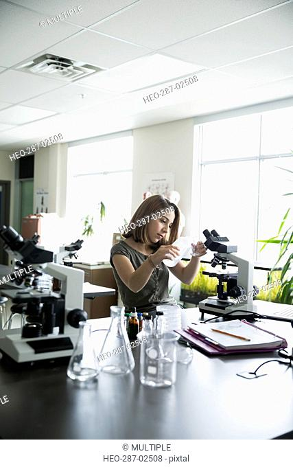 College student conducting scientific experiment at microscope in laboratory