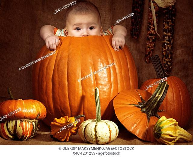 Baby boy sitting inside a big pumpkin  Fall season holidays Thanksgiving and Halloween humorous artistic still life