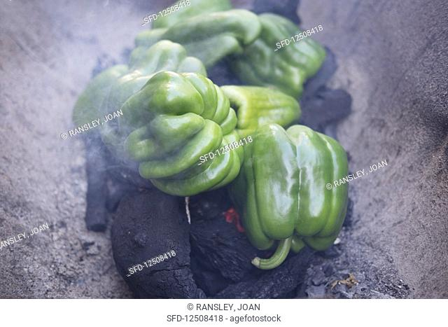 Green peppers cooked over charcoal, Lisbon, Portugal
