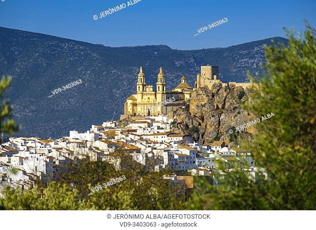 White village of Olvera, Moorish castle & Church of Our Lady of the Incarnation. Pueblos Blancos de la Sierra de Cadiz. Southern Andalusia, Spain