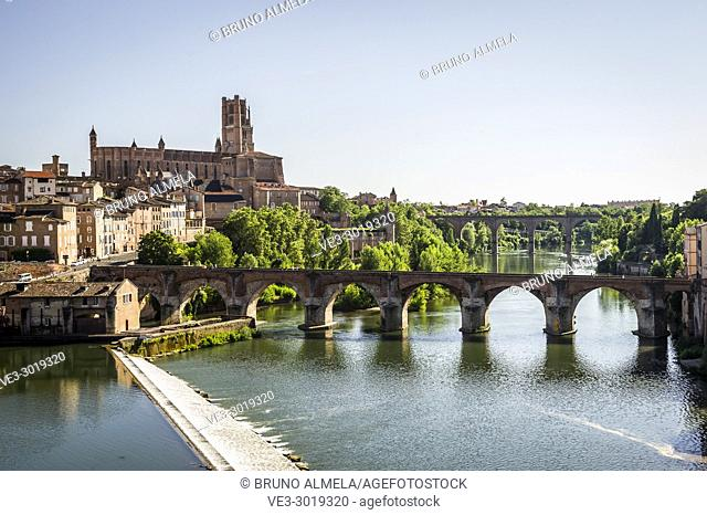 Albi Cathedral and Pont Vieux over Tarn River (Midi-Pyrénées, France)