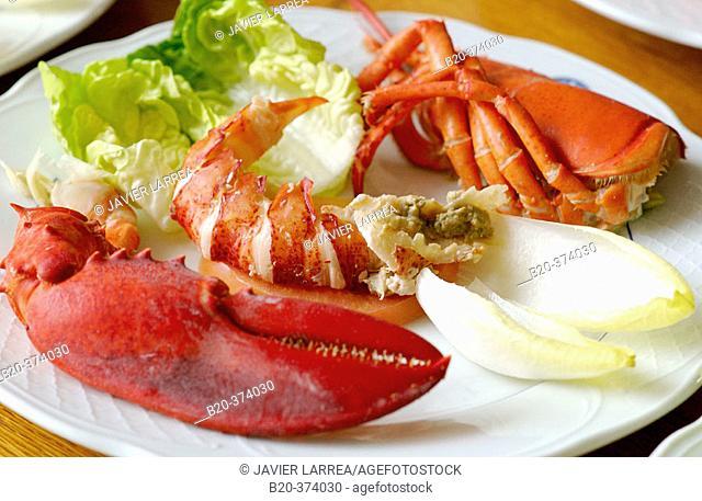 Lobster salad. Sociedad Gastronómica (Gastronomic Society). Donostia-San Sebastian, Gipuzkoa. Euskadi. Spain