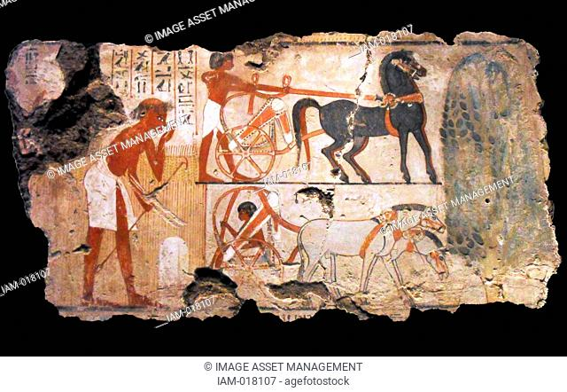 Nebamun was the accountant in charge of grain at the great temple at Amun at Thebes (modern Karnak). This scene from his tomb-chapel shows officials inspecting...