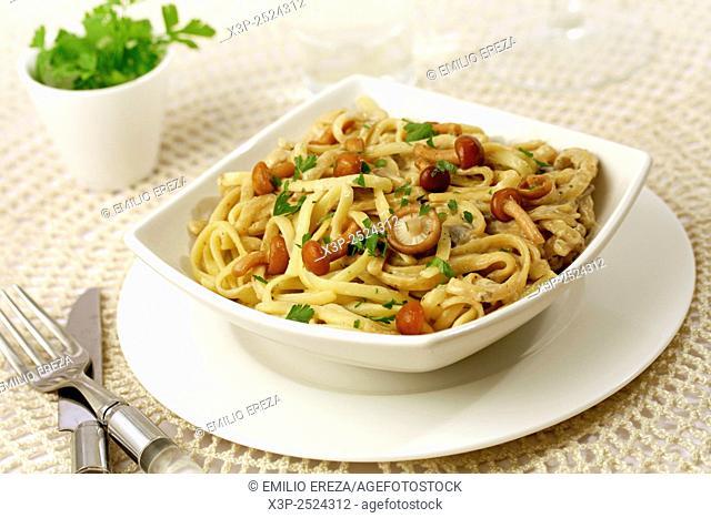 Fetucchini pasta with mushrooms