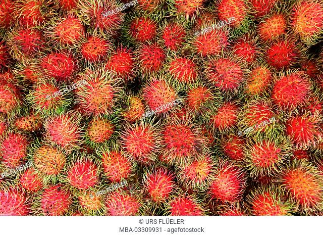 Asia, South-East Asia, Thailand, Yasothon, market, Rambutan, fruit