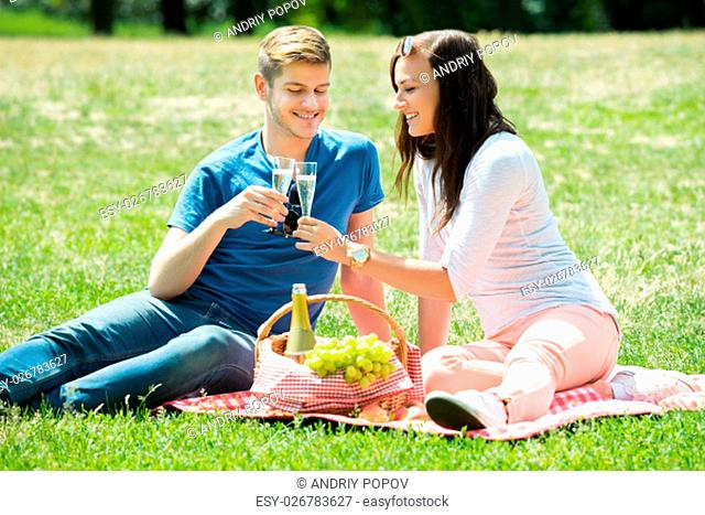Smiling Young Couple Toasting Glass Of Champagne At Park