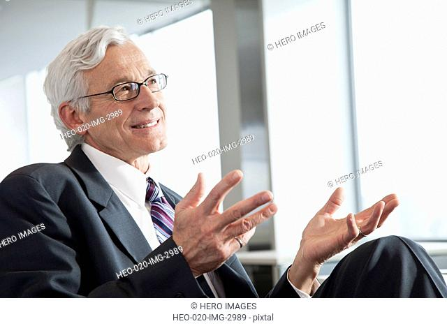 senior businessman in discussion