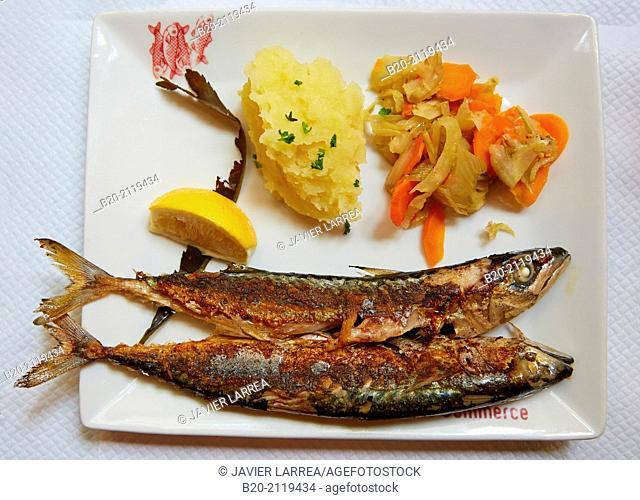 Fish dish. Restaurant. Bordeaux. Aquitaine. France