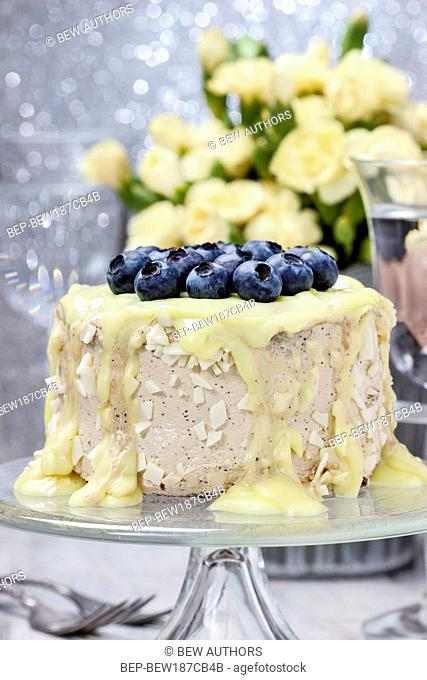 Vanilla cake decorated with blueberries