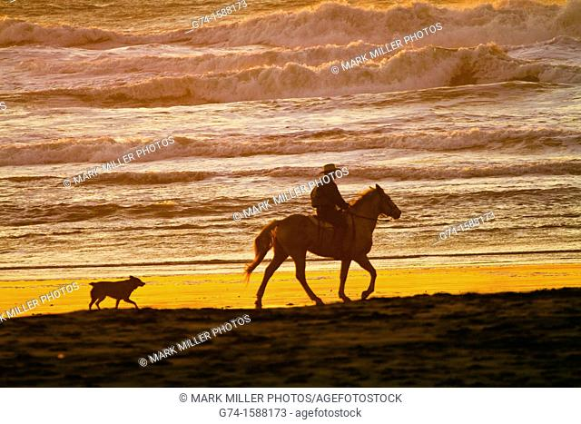 Horseback rider on beach San Francisco California USA