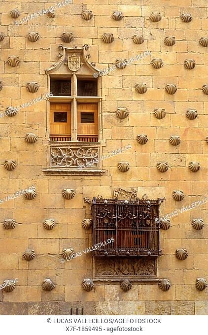 Detail,Casa de las Conchas, House of Shells,Salamanca,Spain