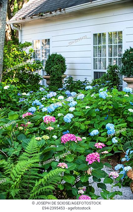 Outdoor living space in a garden setting featuring hydrangeas and boxwoods. Georgia, USA