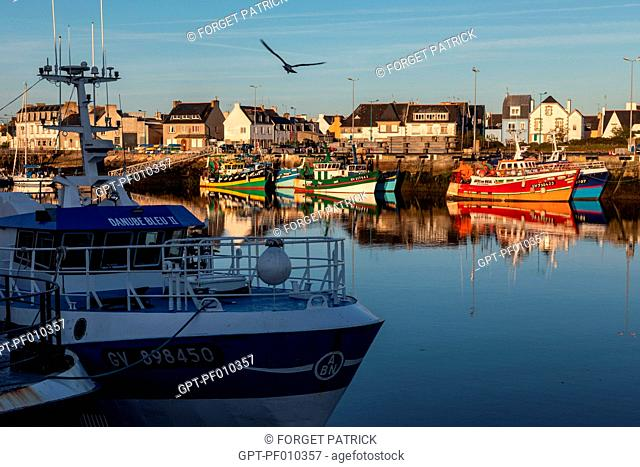FISHERMEN'S BOATS IN THE PORT, LECHIAGAT QUAY, GUILVINEC, FINISTERE, BRITTANY, FRANCE
