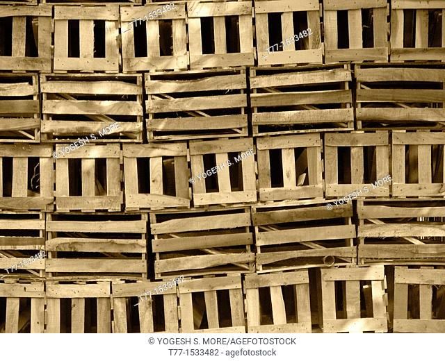 Wooden boxes arranged for packing of Alphonso mangoes Ratnagiri Maharasthra, India