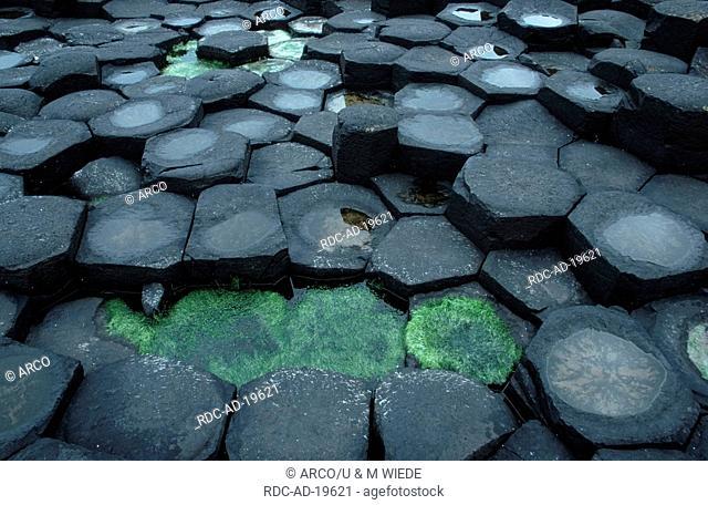 Basalt Columns Giant's Causeway Antrim Northern Ireland
