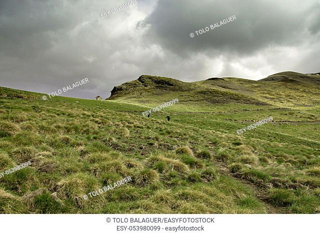 Sendero de la Pleta de las Vacas. Valle de Gistain. Pirineo Aragones. Huesca. España