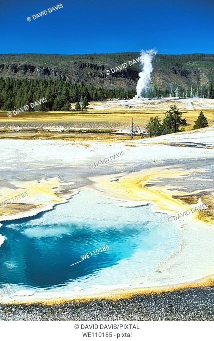 Heart Spring in the Upper Geyser Basin of Yellowstone National Park, Wyoming, United States