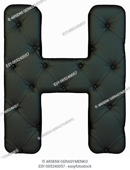 Luxury black leather font H letter