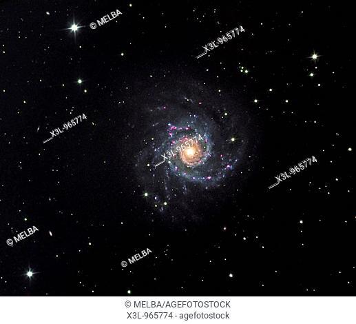 M74 spiral galaxy in Pisces Constellation