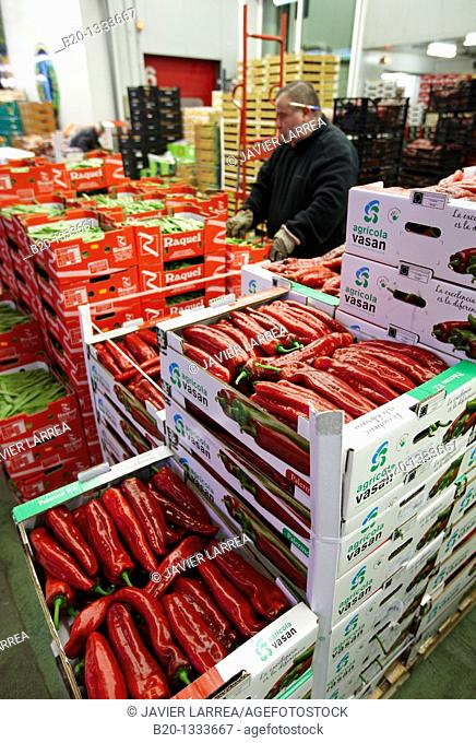Peppers, Mercabilbao fruits and vegetables wholesale market, Basauri, Bilbao, Bizkaia, Euskadi, Spain