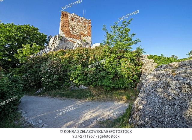 old brick tower called Kozi Hradek (Goat Tower), Moravia region, Czech Republic