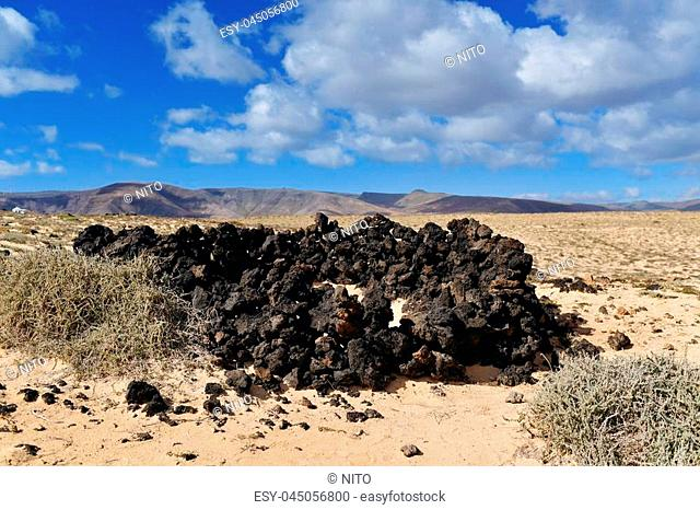 a view of a landscape in the north-east of Lanzarote, Canary Islands, Spain, with a characteristic shelter to protect from of the wind built with volcanic rocks...