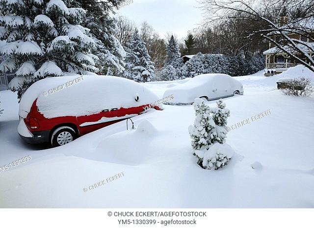 Morning after blizzard with cars buried in snow