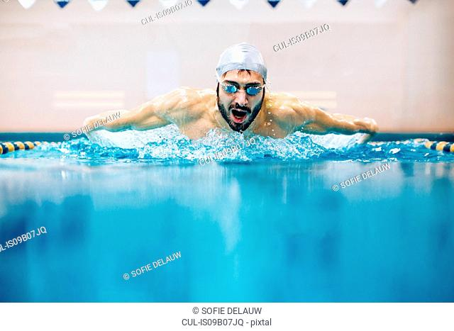 Man in swimming pool doing butterfly stroke