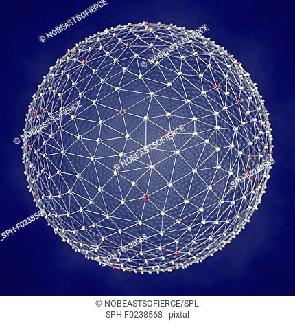 Network, illustration
