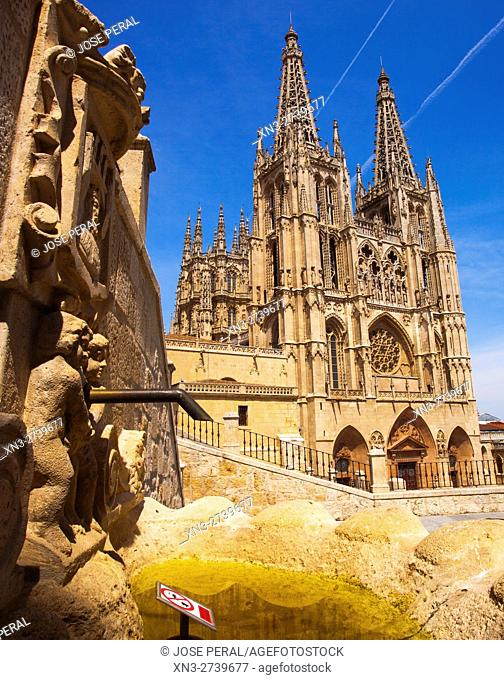 Fountain and Cathedral of Burgos, Burgos city, Way of St. James, Castilla y León, Castile and León, Spain, Europe