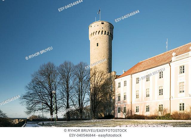 Tallinn, Estonia. View Of Upper Town Castle Corner Tower Tall Hermann Or Pikk Hermann In Sunny Winter Day