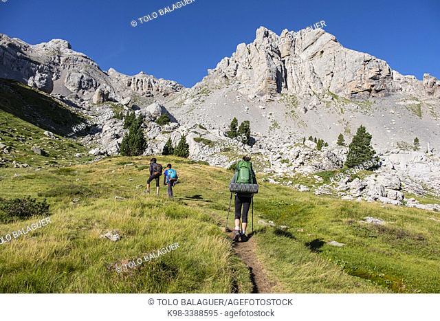 Marmitou, Anaye ravine, high Pyrenean route, Aquitaine region, department of Pyrénées-Atlantiques, France
