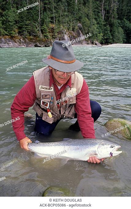 Flyfisherman holding steelhead prior to release, Dean river, British Columbia, Canada