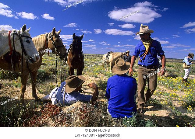 Cowboys having a rest during a cattle drive on Cowarie Station on the Birdsville Track, South Australia, Australia