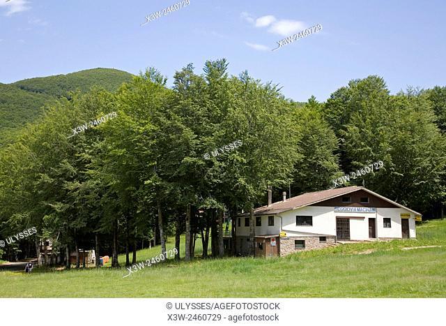 europe, italy, tuscany, amiata mountain, prato delle macinaie