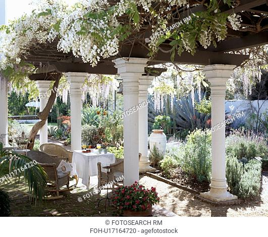 Table and chairs below tall neo-classical pillars covered with white wisteria in large courtyard garden