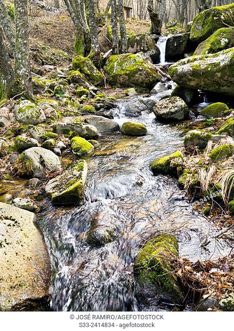 Chorro stream in the Sierra de Gredos. La Adrada. Avila. Castilla Leon. Spain. Europe