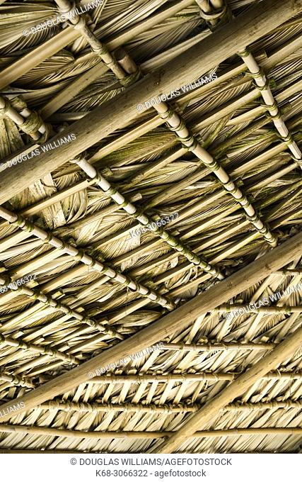 Thatched roof at a small retreat near San Agustinillo, Oaxaca, Mexico