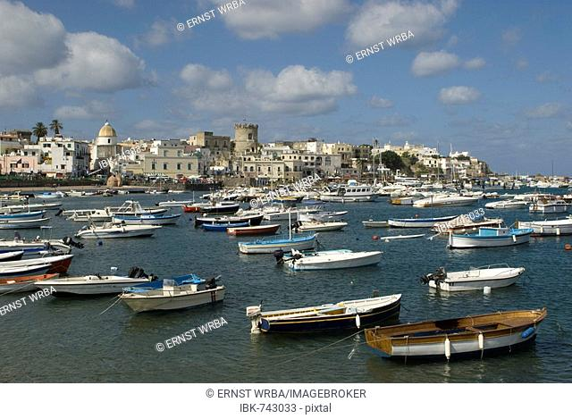 Boats in the harbour at Forio, Gulf of Naples, Campania, Italy