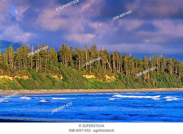 Waves in an ocean, Long Beach, Pacific Rim National Park Reserve, Vancouver Island, British Columbia, Canada