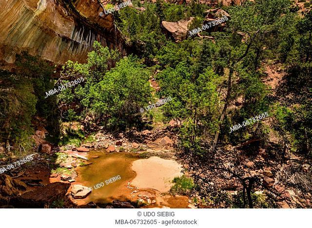 The USA, Utah, Washington county, Springdale, Zion National Park, Zion canyon, Lower Emerald Pools