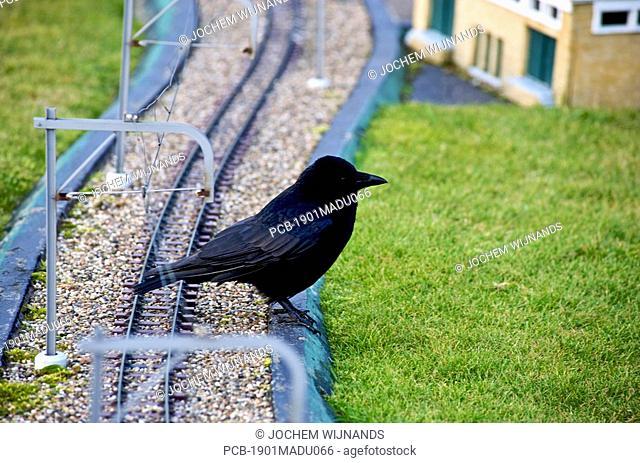 Dutch railways as replicated in Madurodam