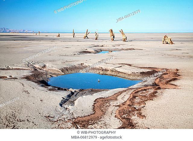 Beach, water hole, Antelope Island, Great Salt Lake, Utah, the USA