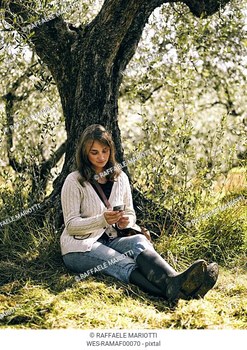 Italy, woman sitting under olive tree using cell phone