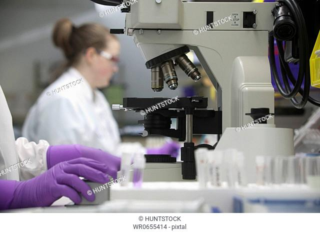 Scientist analyzing stem cell sample in a laboratory