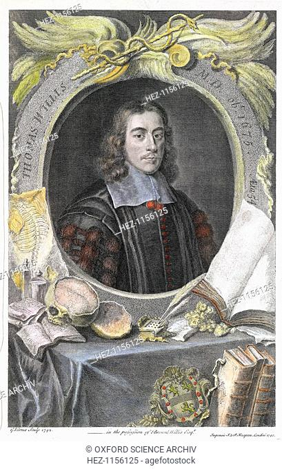 Thomas Willis, 17th century English physician, 1742. Willis (1621-1675) was the first man in modern times to notice the sweetish taste of diabetic urine in...