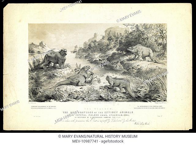 Original artwork by Walter Ray Woods for Benjamin Waterhouse Hawkins