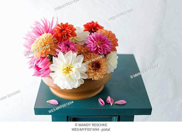Bowl with dahlias