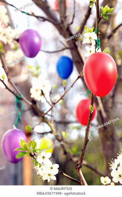 Spring, Easter, Easter eggs, party, tree